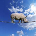 Mit der ISO 9001:2015 die QM-Risiken im Blick