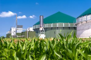 Biogasanlage mit Maisfeld
