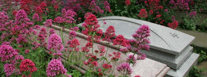 Blumen an Gräbern