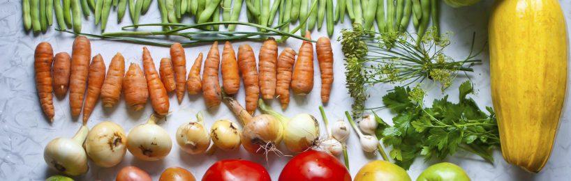 Ordentlich in Reihen sortierte Gemüse: Gurken, Karotten, Tomaten , Kartoffeln, Mais, Rote Beeten