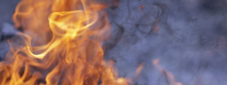 An der gesetzlich vorgeschriebenen Brandverhütungsschau nimmt der Brandschutzbeauftragte stets persönlich teil und begleitet die Brandschutzdienststelle (z.B. Feuerwehr) bei der Durchführung.