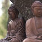 Buddhisten bestatten