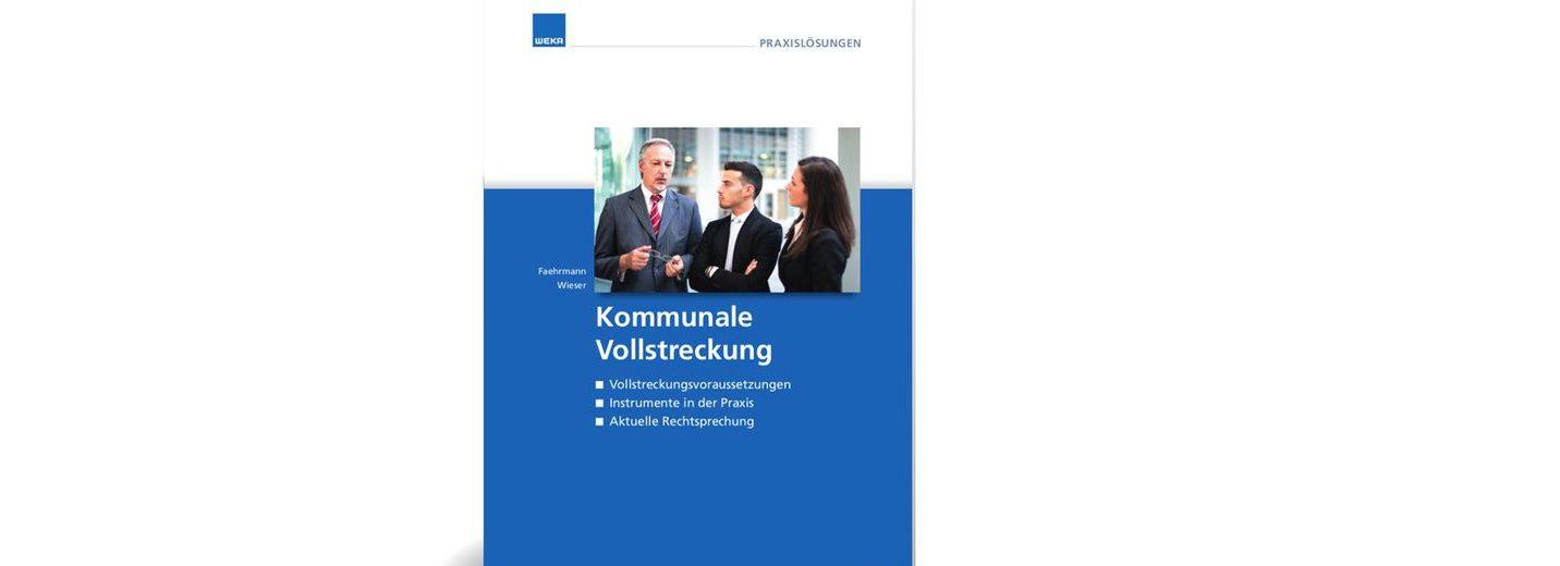 Kommunale Vollstreckung: Vollstreckungsvoraussetzungen, Instrumente in der Praxis, aktuelle Rechtsprechung