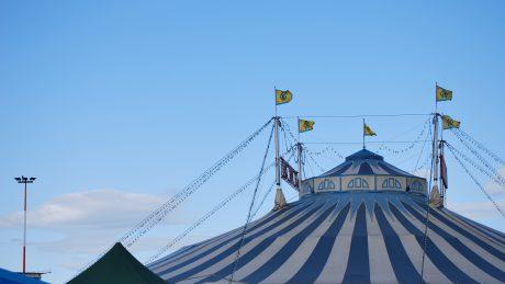 Kommunales Wildtierverbot für Zirkusaufführungen rechtswidrig