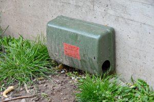 Futterkasten, der auf Ratten schließen lässt