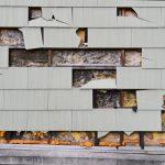 Von Nagern zerstörte Hausfassade
