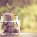junge Pflanze in Glas voller Münzen