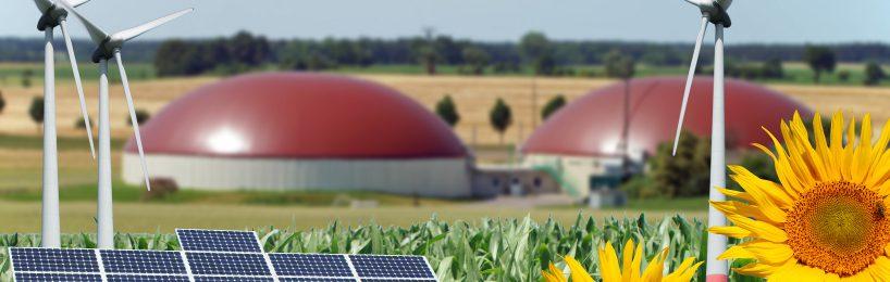 Erneuerbare Energien: Windenergie vor Biomasse