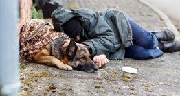 Zuweisung Obdachlosenunterkunft
