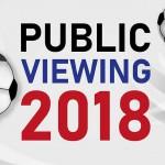 Download: Musteraushang Public Viewing im Unternehmen