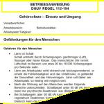 Gratis Betriebsanweisung: DGUV Regel 112-194: Gehörschutz – Einsatz und Umgang