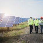 Mitarbeiter vor Solarstrom-Anlagen